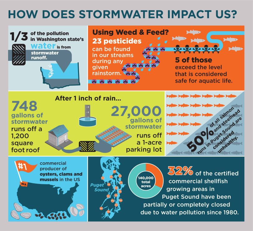 impacts-of-stormwater
