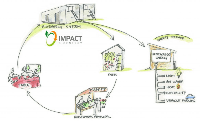 impact bioenergy diagram