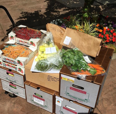 farmstand pic.png