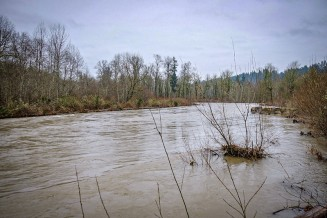 Cedar River reached its highest flow since 2009