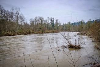 Cedar River reached its highest flow since 2009